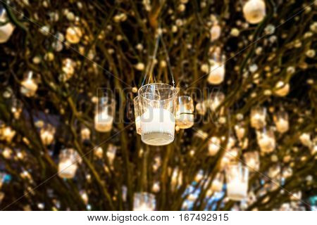 candle pots were hang on a tree