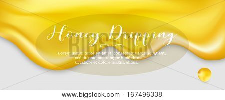 Honey dripping, vector illustration. Golden liquid flow with drop.