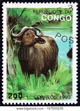 CONGO - CIRCA 1993: a stamp printed in Congo shows African Buffalo Syncerus Caffer is a Large African Bovine circa 1993