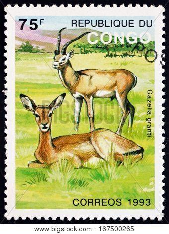 CONGO - CIRCA 1993: a stamp printed in Congo shows Grant's Gazelle Nanger Granti Animal circa 1993