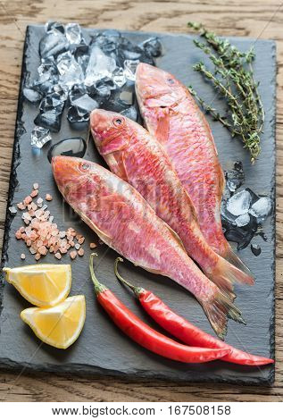 Raw red mullet with ingredients on the dark background