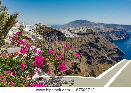 Balcony with bougainvillea. In the background you see the city of Fira Santorini island. 13/08/2016
