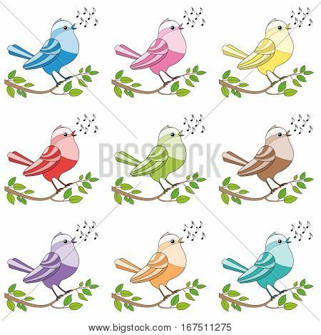 Songbirds - nine colorful twittering and chirping and singing birds.