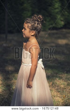 little girl in a pink ballroom dress on nature