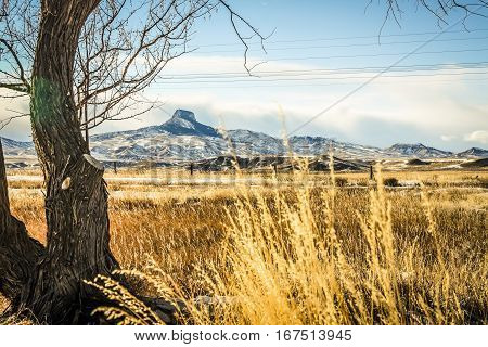 Landscape with Heart Mountain in northern Wyoming
