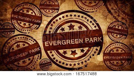 evergreen park, vintage stamp on paper background