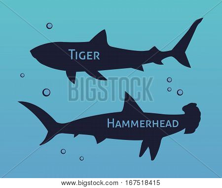 Set of silhouettes of sharks isolated on sea background vector
