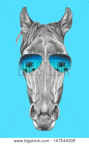 Portrait of Horse with mirror sunglasses. Hand drawn illustration.