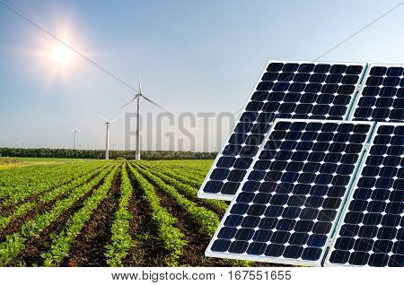 Photo Collage Of Solar Panels Against The Crops Background - Conceptual Image
