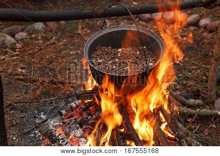 A cooking pot hanging above a fire with beans inside