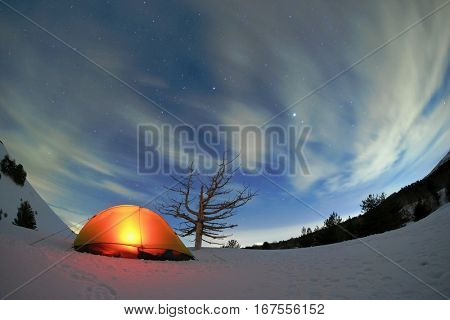 lighting tent and dead tree under starry sky on Etna Park, Sicily