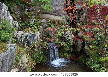 Traditional Japanese Garden