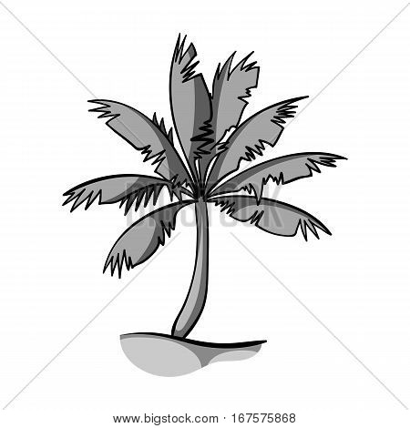 Palm tree icon in monochrome design isolated on white background. Surfing symbol stock vector illustration.