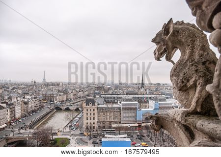 Paris aerial view with Chimera of Notre Dame