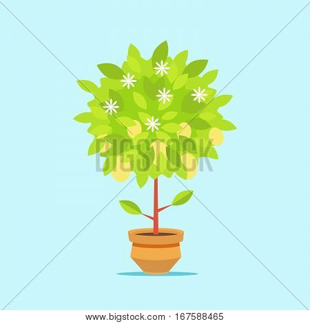 Big money tree in a pot. The growth of financial wealth. Isolated on white background. Vector, illustration EPS10