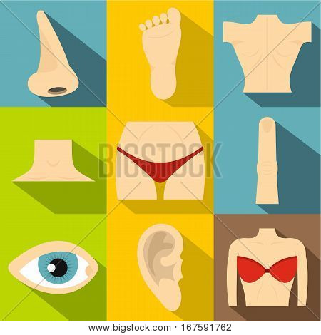 Human body icons set. Flat illustration of 9 human body vector icons for web