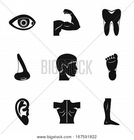 Human body icons set. Simple illustration of 9 human body vector icons for web