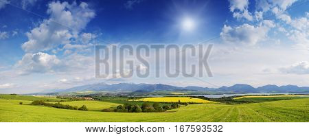 Spring Meadow In Mountains