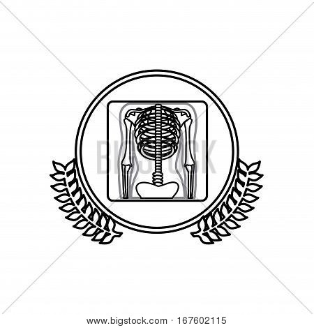 monochrome with x-ray of bones in circle with olive branches vector illustration