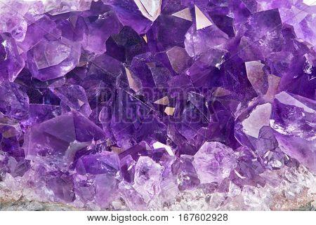 macro photo of lilac amethyst group