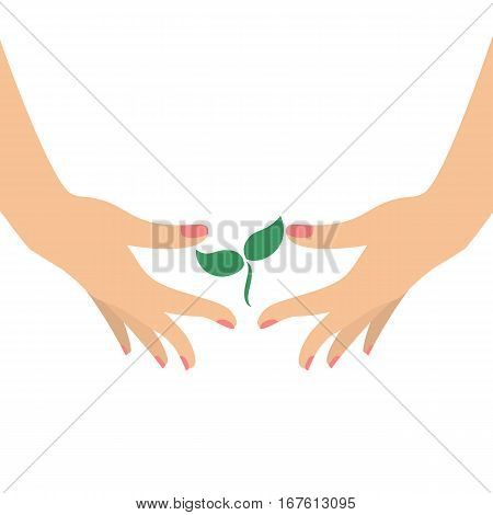 Hands holding small green sprout. Ecological concept