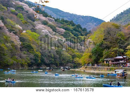 KYOTO, JAPAN - APRIL 6, 2016 - Young lovers and families paddle rowboats up the Katsura River in Kyoto to enjoy the spring cherry blossoms