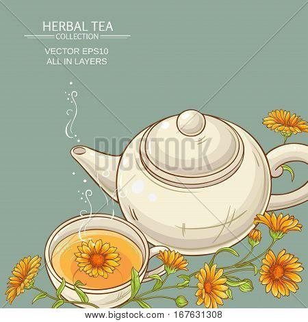 cup of calendula tea and teapot vector background