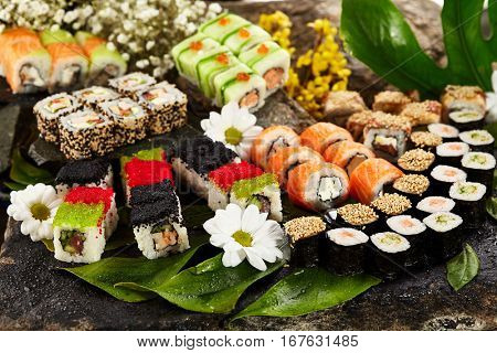 Japanese Sushi Set - Various Maki Sushi Roll and Nigiri Sushi. Japanese Cuisine and Natural Flower Concept