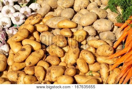 close up of fresh potatoes on a market