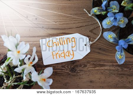Sunny Label With English Text Chilling Friday. Spring Flowers Like Grape Hyacinth And Crocus. Aged Wooden Background