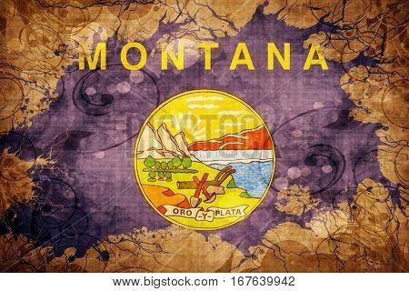 Vintage montana flag