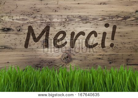 French Text Merci Means Thank You. Spring Season Greeting Card. Aged Wooden Background With Gras.