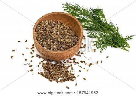 Fragrant fennel seeds on white background. Studio Photo