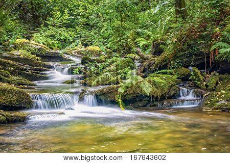 Trethevy Cornwall United Kingdom - August 8 2016: River Trevillet running through St Nectan's Glen. Cascade of small waterfalls.