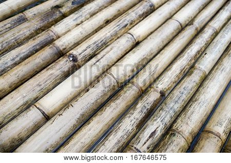 Sturdy Bamboo Wood, A Raft Made Of , Background