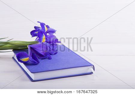 Bouquet Of Beautiful Irises With Notebook On White Wooden Background