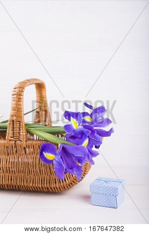 Bouquet Of Irises In Basket With Gift Box On White Wooden Background