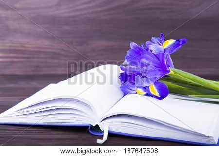 Bouquet of beautiful irises with notebook on dark wooden background.