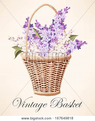 Vector illustration of vintage basket with beautiful lilac branches