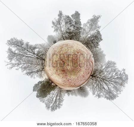 Little planet globe spherical panorama on russian winter sunlight landscape with trees and snow.