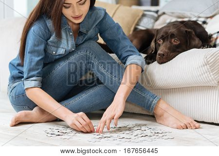 Mental exercise. Smart graceful pretty woman spending her free time at home sitting in a living room while her dog lying on a couch beside her