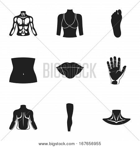 Part of body set icons in black style. Big collection of part of body vector symbol stock