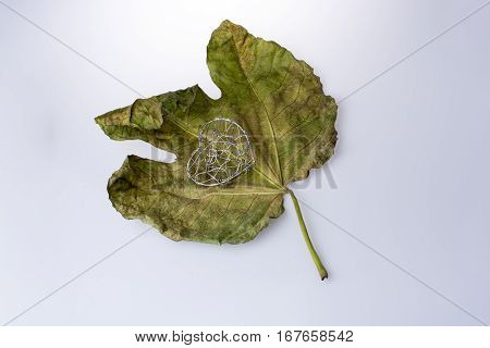 Little Heart Shape Object Placed On A Dry Leaf