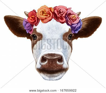 Portrait of Cow with floral head wreath. Hand-drawn illustration, digitally colored.