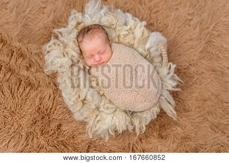 sweet sleeping swaddled newborn on fluffy terry blanket, top view