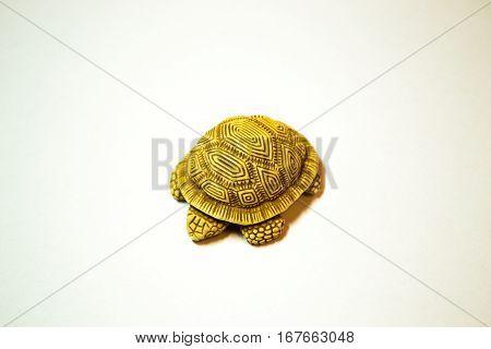 antique Japanese netsuke turtle made of boxwood isolated on white background
