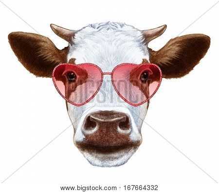 Cow in Love! Portrait of Cow with heart shaped sunglasses.  Hand-drawn illustration, digitally colored.