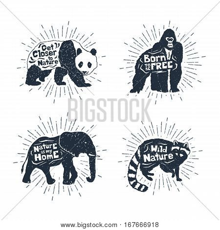 Hand drawn textured vintage badges set with panda gorilla elephant and raccoon vector illustrations and inspirational lettering.