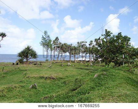 a great Landscape of an island paradise