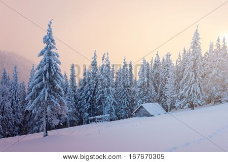 Winter Landscape with a wooden hut in the mountains. Spruce forest in the snow and fog